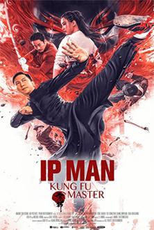 ip-man-kung-fu-master