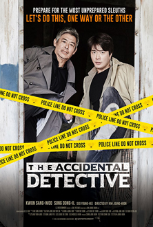 The Accidental Detective